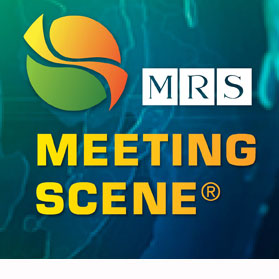 Meeting Scene Logo