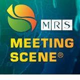 Meeting Scene Logo