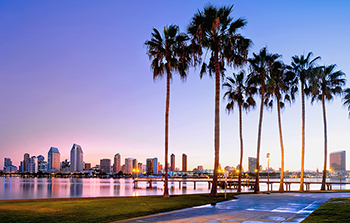 Palm trees line the coast of San Diego