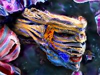 Colored SEM image of the layered Ti2C MXene showing similarities to the face of Lord Voldemort, a character in Harry Potter movie series.